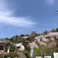 春  の  実